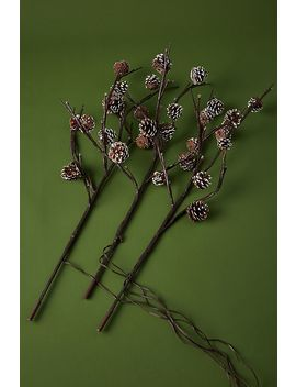 Twinkling Pinecone Branches by Anthropologie