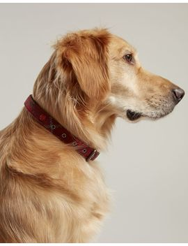 Tweed Leather Pet Collar by Joules