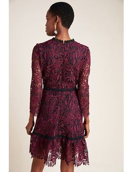 Shoshanna Layla Lace Mini Dress by Shoshanna