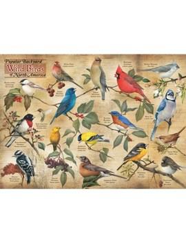 Cobble Hill Wild Birds Puzzle   1000 Piece by Cobble Hill