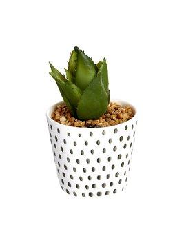 Wilko Assorted Artificial Cactus In Ceramic Pot Wilko Assorted Artificial Cactus In Ceramic Pot by Wilko