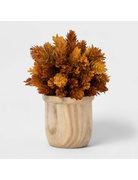 "9"" X 6.5"" Artificial Hops Arrangement In Wooden Pot Brown/White   Threshold™ by Threshold"
