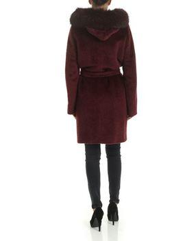 Osmio Coat In Wine Color by Max Mara Studio