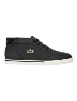 Ampthill 119 1 Cma by Lacoste