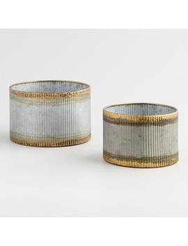 Gold Rim Galvanized Metal Planter by World Market