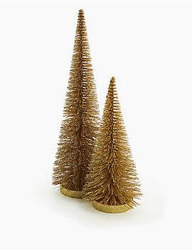 Kamerdecoratie Gouden Borstelboom by 35 Dagen Retourneren