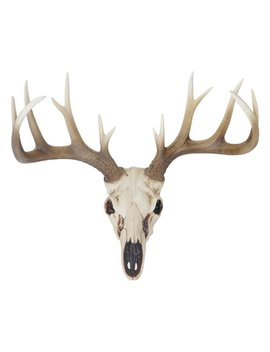 Deer Antler Wall Décor by World Menagerie