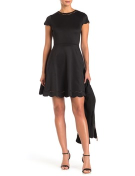 Scalloped Mesh Trim Skater Dress by Ted Baker London