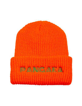 Good Fishing Pangaea Beanie by Good Fishing