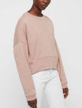 Enrico Cotton Jersey Jumper by Allsaints