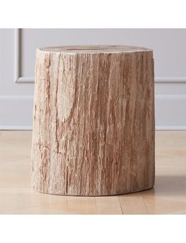 Petrified Wood Side Table by Crate&Barrel
