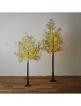 Led Faux Leaf Tree, Olive by Terrain
