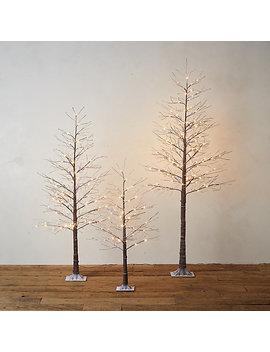 Faux Pre Lit Led Christmas Tree by Terrain