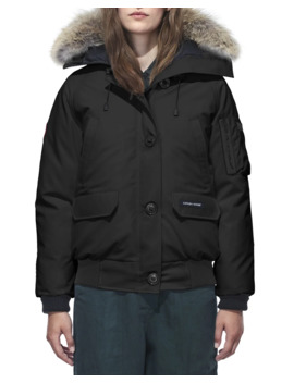 Chilliwack Down Bomber Jacket W/ Fur Hood by Canada Goose