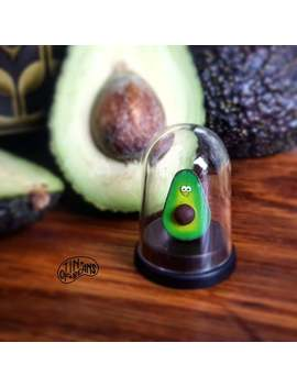 Pet Avocado, Vegan, Vegan Gift, Funny Gift, Novelty Gift, Birthday Gift, Avocado Gift, Tin Of Beans, Gift, Dorm Decor, Christmas Gift by Etsy