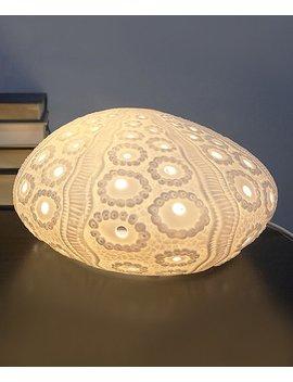 Porcelain Sea Urchin Lamp by Streamline