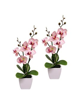 Orchid Floral Arrangement In Pot by The Seasonal Aisle