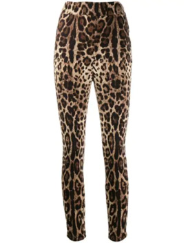 Cropped Hose Mit Leopardenmuster by Dolce & Gabbana