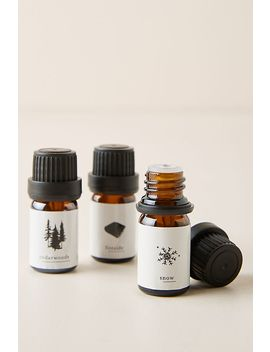 Winter Essential Oils, Set Of 3 by Anthropologie