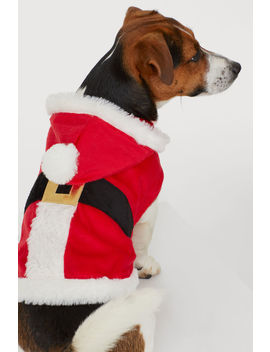 Santa Claus Costume For A Dog by H&M