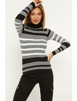 Black Stripe Rib Roll Neck Jumper by Select