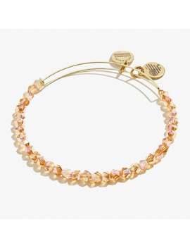 caramel-splendor-beaded-bangle-rafaelian-gold by alex-and-ani