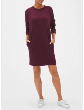 Raglan Sweatshirt Dress In French Terry by Gap