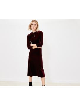 Velvet Midi Dress by Oasis