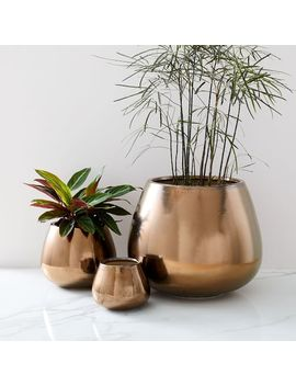 Ceramic Planters   Burnt Gold by West Elm