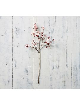 Faux Berry Branch   Red by Pottery Barn