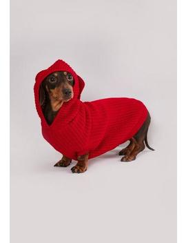 Red Rib Knitted Dog Hoodie by Missguided