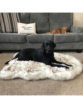 Pet Dog Bed Mat Faux Fur Plush Dog Cushion Mat Super Soft Puppy Rest Blanket Bed Cat Dog Cushion For Small Medium Large Dogs by Ali Express.Com