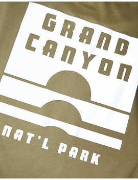 Tailgate Men's Grand Canyon National Park Reflective T Shirt by American Eagle Outfitters