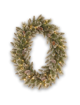 "30"" Glittery Bristle® Pine Oval Wreath With White Tipped Pine Cones & Warm White Led Lights by National Tree Company"
