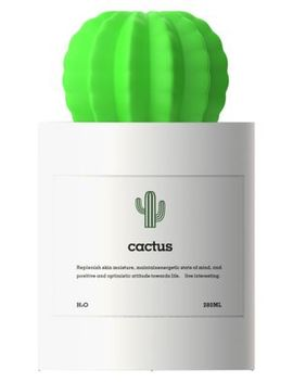 Cactus Mist Humidifier by Qushini