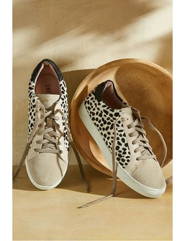 Crevo Cardi Sneakers by Soft Surroundings