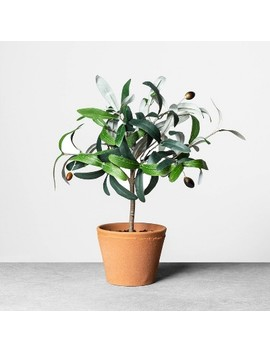"<Span><Span>Faux Olive Branch Plant   Hearth & Hand With</Span><Br><Span>Magnolia</Span></Span><Span Style=""Position: Fixed; Visibility: Hidden; Top: 0px; Left: 0px;"">…</Span> by Hearth & Hand With Magnolia…"