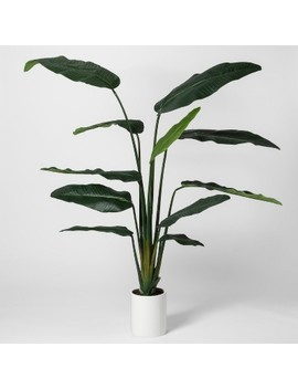 "80"" X 30"" Artificial Banana Tree In Pot Green/White   Project 62™ by Shop This Collection"