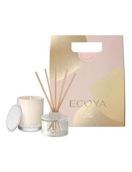 Christmas Mini Gift Set Sweet Pea & Jasmine by Ecoya