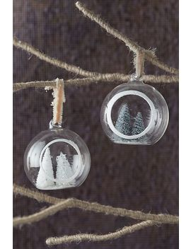 Evergreen Tree Globe Ornament by Anthropologie