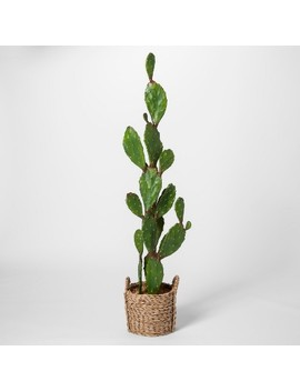 """61"""" X 18"""" Artificial Cactus In Basket Green/Brown   Opalhouse™ by Shop Collections"""