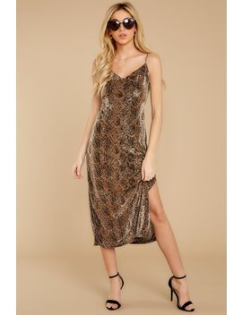 Dangerous Love Gold Snake Print Midi Dress by Dress Forum