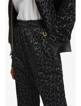Miles Kane Flock Leopard Track Pant  by Fred Perry