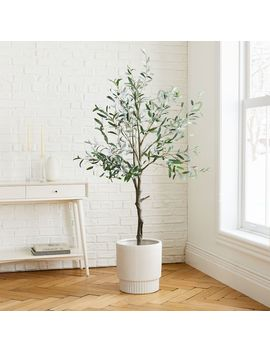 Faux Olive Tree + Large White Fluted Planter Set by West Elm