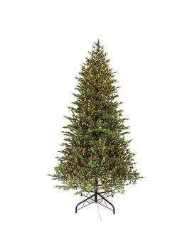 9 Ft. Pre Lit Led Elegant Fir Artificial Christmas Tree With 3000 Warm White Micro Dot Lights by Home Accents Holiday