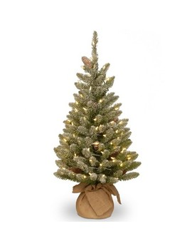 National Tree Company Slim 3ft Pre Lit Snowy Concolor Fir Artificial Tree In Burlap With Snowy Cones & Warm White Battery Operated Le Ds by National Tree Company