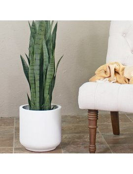 Smithton Fiber Clay Pot Planter by Modern Rustic Interiors