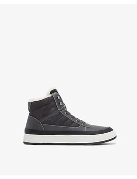 Black Sherpa Lined High Top Sneakers by Express