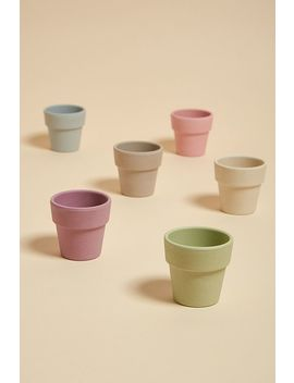 Zuperzozial Set Of 6 Bamboo Egg Cups by Zuperzozial