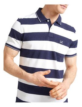 Evan Stripe Polo by Sportscraft